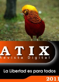 Revista Digital Atix #19