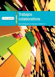 Trabajos colaborativos. Serie para la enseñanza en el modelo 1 a 1